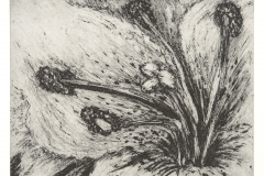 2013 Lithographic Crayon Solar Etching